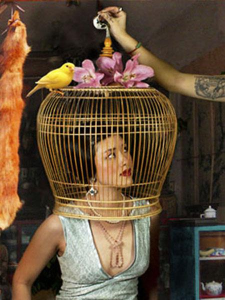 Birdcage - Qiu Xian Mei