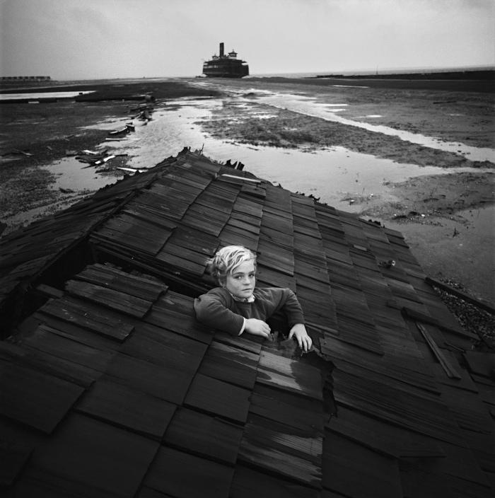 Flood Dream - Tress Arthur