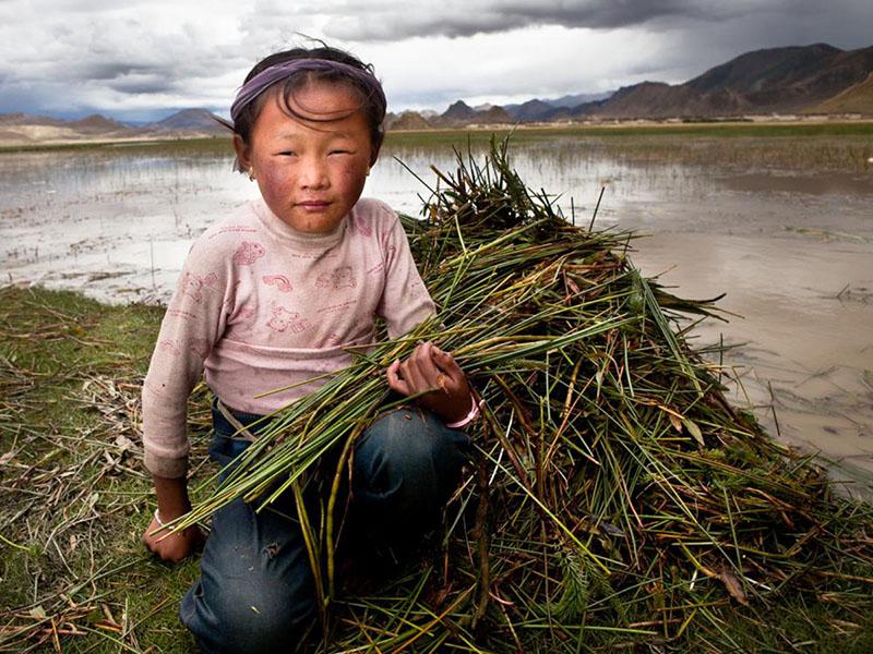 Tibet west Tibet - Borges Phil
