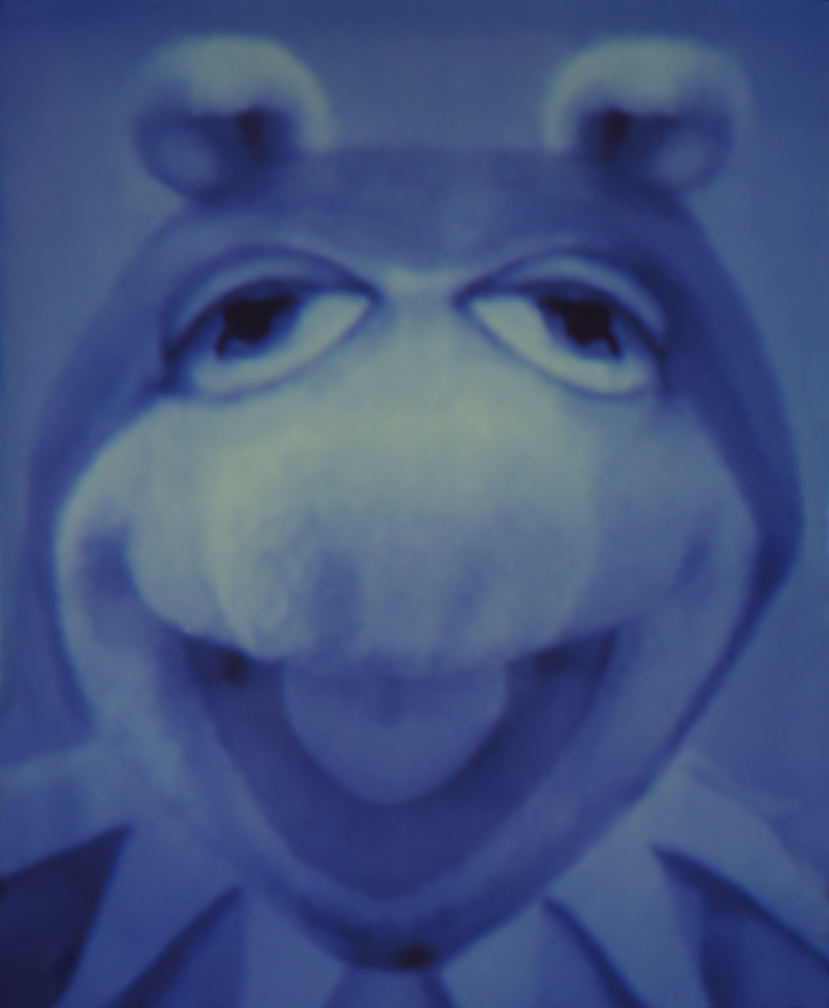 Prog_Fig (Kermit_Miss Piggy)